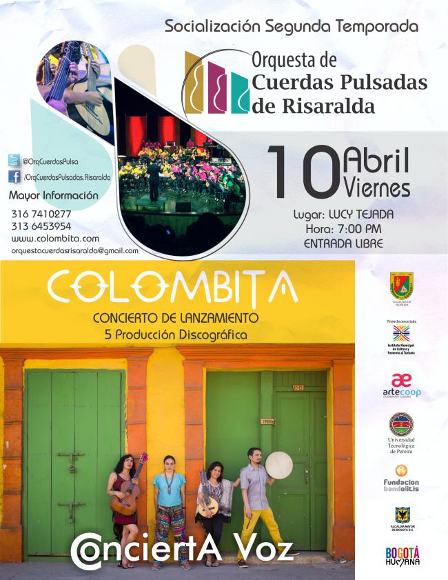 Afiche Socialización 2015